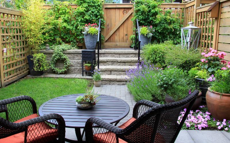 A photo of a backyard garden